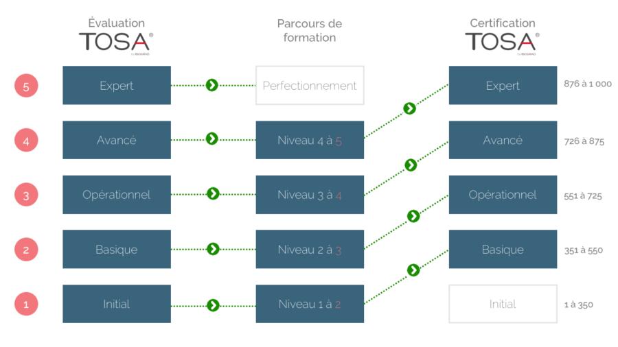 Formation Excel Grille de niveaux TOSA DESKTOP